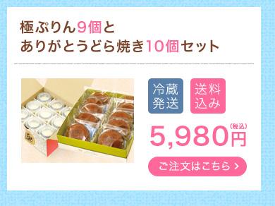 極ぷりん9個とありがとうどら焼き10個セット