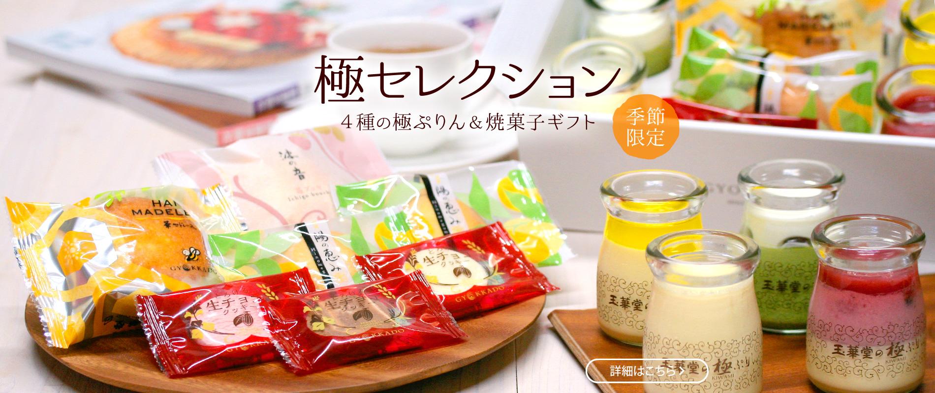 極セレクション 4種の極ぷりん&焼菓子ギフト