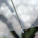 4月14日(土)曇りのち雨 | お取り寄せスイーツ玉華堂