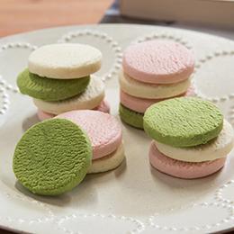 静岡土産にとろける生チョコクッキー